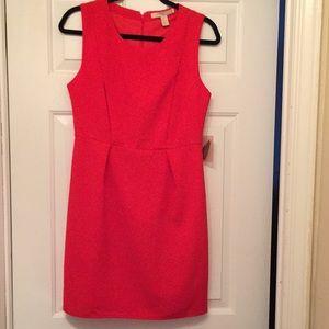 NWT sheath dress in crepe like fabric